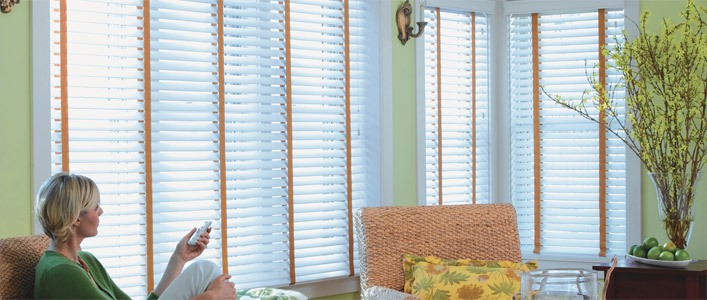 Budget Blinds offers more so you can save time and frustration and get back to life. Motorization adds modern convenience to your window coverings. Window Film adds UV protection, security and energy efficiency. Accessories like pillows, area rugs, and faux iron art let you express your indiviual style briliantly!